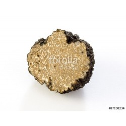 Truffe d'été fraîche au gramme (tuber aestivum)
